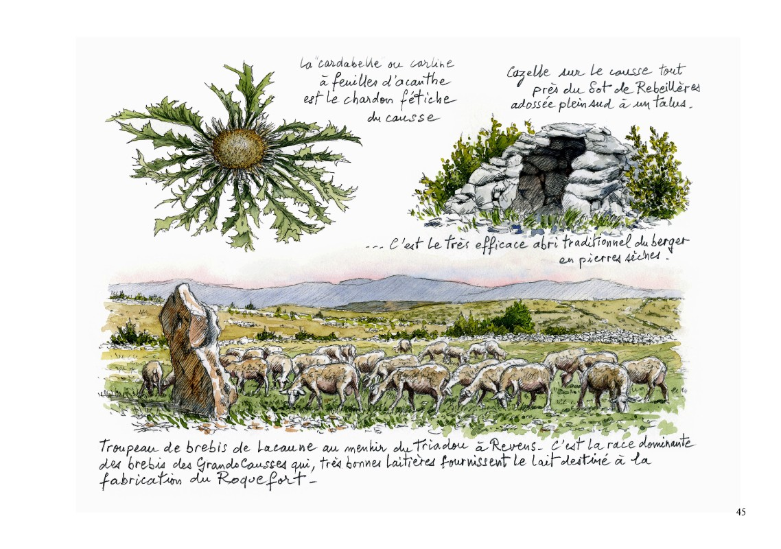 Page 45 : arts et traditions populaires, architecture, économie rurale et particularités locales constituent une très grande partie du carnet, situant le gouffre, l'histoire de sa découverte et le déroulement de son exploration, au cœur d'un terroir, d'une région, d'un pays de très grand caractère...