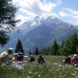 Stage aquarelle Hautes vallées de l'Alpe, Alain MARC 2013