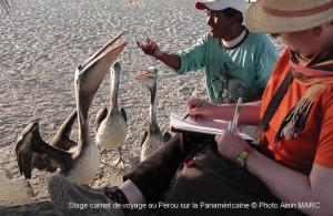 Stage carnet de voyage au Pérou sur la Panaméricaine, Alain MARC 2014
